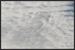 Tightly packed Clouds over West Auckland (Zelda Wynn) Tags: sky nature weather clouds wind artgalleryofnsw cloudscape troposphere altostratus artgalleryofnewsouthwales inspiredbyalfredstieglitz zeldawynnphotography