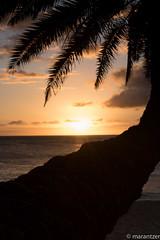 Sunset from Sunset Beach on Oahu (marantzer) Tags: sunset usa digital hawaii nikon unitedstates pacific oahu unitedstatesofamerica pacificocean northshore sunsetbeach nikkor dslr haleiwa 70200mm nikkorlens nikonlens d810 afsvrzoomnikkor70200mmf28gifed nikond810 solmeta marantzer geotaggerpro2 solmetageotaggerpro2