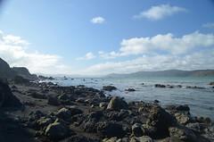Beaux paysages à quelques minutes de Wellington