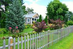 Hudson fence (Krasivaya Liza) Tags: summer nature rural nikon farming upstate hudson newyorkstate claverack