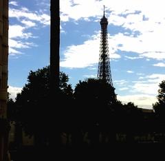 Projet Photo Renouvelable - semaine 34 : Contre-jour (Emma Ravinet) Tags: shadow paris outdoors ombre toureiffel contrejour backlighting