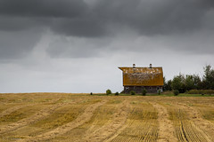 Standing Watch (Attic Light) Tags: barn landscape cloudy farm harvest weathered