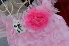 Details - Purbeck Folk Festival 2014 (dorsetbays) Tags: pink summer england music festival concert dress dancing folk gig crowd august event dorset tutu purbeck pink