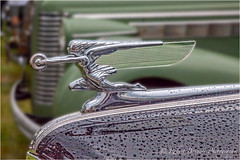 HoodOrnament20120715MG2253 (rbnaso) Tags: car hoodornament carhood