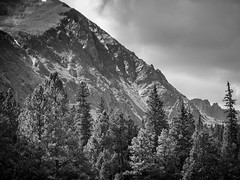 GEPC Men's Mountain Experience 2014 (gepcphotos) Tags: autumn usa mountain landscape photography photo colorado unitedstates image hiking united location best land type specs states landscapephotography imagetype photospecs bestofcolorado