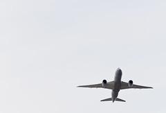 into oblivion (pbo31) Tags: california blackandwhite white color silhouette northerncalifornia plane climb fly airport nikon sfo flight jet september bayarea takeoff jal oblivion sanbruno d800 2014 sanmateocounty avaition sanfranciscointernational