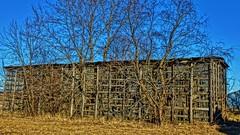 Corn Crib From A Bygone Era (chumlee10) Tags: barn oregon oglecounty vintage corncrib il illinois old decrepit trees oldbarnday
