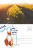 Post Art Northwest | March 2017 (emilyfrances5) Tags: ashleymartin emilymccann postartnorthwest postcard postcardart pnwartist pnwphotographer seattleartist seattlephotographer collaboration snailmail fox spring emilydickinson daffodils skagitvalley washingtonstate yellow orange blue goldenhour light