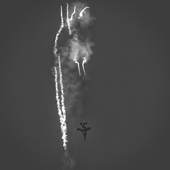 More Hornet / flare action from the Airshow (phunnyfotos) Tags: phunnyfotos australia victoria vic melbourne geelong avalon avalonairshow airplane aircraft airshow airport airshowdownunder hornet military raaf jet fa18hornet flares mono bw monotone nikon d500 nikond500 demonstration display expo australianinternationalairshow