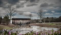 An alternate rendering - 2017-02-25_07 (Paul and Nalva) Tags: nx500 samsungnx500 rokinon12mmf2 bridge flp