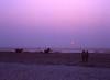 s015 (sxediy) Tags: india goa film mamiya mamiya645 sekor 8019 sekor8019 645pro art artistic amazing beauty