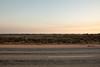 447A8529 (nathankdavis) Tags: nullarbor southaustralia westernaustralia roadtrip road house australia bight ocean nature seascape explore plains desert landscape perth melbourne highway kangaroo vic wa travel open