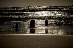2017 0308 St. Joe Pier-100 (greenshots32) Tags: mckenziehassle michellehassle nature silverbeach snowandice tiscorniabeach tiscorniapier beach bigwaves seagulls sunset winter