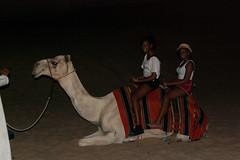 Visite d'un camp nomade dans le désert (Πichael C.) Tags: city camp vacances holidays eau dubai uae landmark le ville dans unis visite tourisme dun désert nomade dubaï arabes emirats