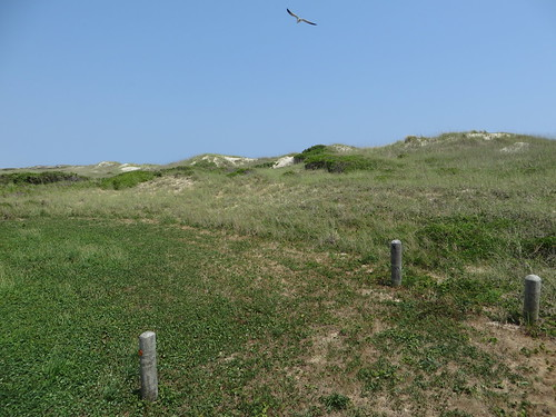 Cape Hatteras National Seashore, Outer Banks Between Hatteras and Frisco, North Carolina