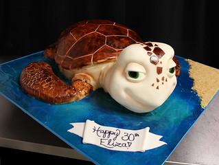 Sea Turtle Cake med