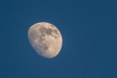 Luna (cives-expat) Tags: españa moon spain luna fuentebravía elpuertodesantamaría