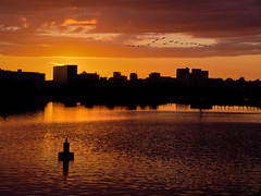 Salford Silhouettes. (Yvette-) Tags: manchester salfordquays nikond5100