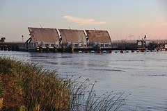 Montezuma Slough Salinity Control Gates