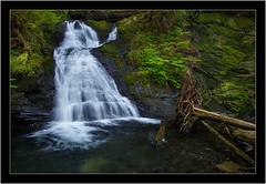 Humpback Falls, WA. (jordynmurdock) Tags: blue brown white lake blur green fall nature water yellow creek forest canon river outdoors photography waterfall washington spring woods nw northwest hiking wide wideangle hike falls trail motionblur waterfalls pacificnorthwest wa hiker hikers waterblur pnw 6d 24105 lake22