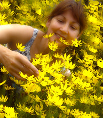 Let you in her secret garden (Time-Freeze) Tags: flowers yellow secretgarden timefreeze everythingyouwant letyouin