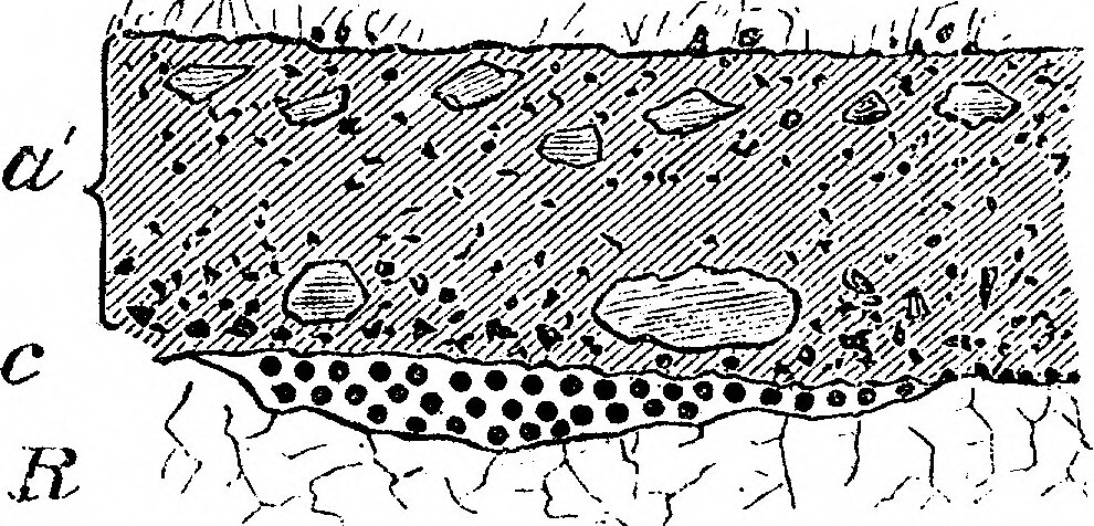 "Image from page 12 of ""On the Evidences of a Submergence of Western Europe, and of the Mediterranean Coasts, at the Close of the Glacial or So-Called Post-Glacial Period, and Immediately Preceding the Neolithic or Recent Period"" (1893)"