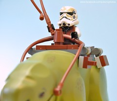 Sandtrooper in a Western suit with Dewback. (Phil Korn) Tags: new summer mos star lego background suit enjoy stuff wars clone cantina sets eisley tatooine 2014 dewback sandtrooper minifigures thelegomovie suddsbackwash