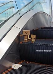 DANBO (WovenTam) Tags: family love toys danbo danboard minidanboard