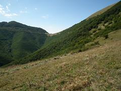 Piani di Rolla (Luca Pisani) Tags: parco valle monte delle regionale cucco prigioni motette pascelupo