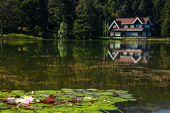 Bolu Glck (selcukozkan) Tags: trees lake reflection nature water forest landscape photography photo nikon natur photograph colourful nikkor natures glck dx nikkorlenses 18105mm d3100 nikond3100