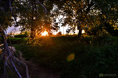 Beyond. (muerdelaespina) Tags: wood trees sunset sun sol forest atardecer nikon camino path bosque rbol puestadesol 3100 rayodeluz muerdelaespina