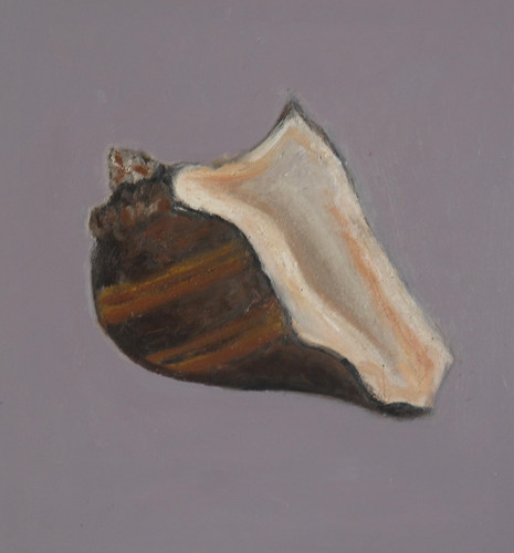 "Brown Shell - oil on board 8"" x 8"" $250"