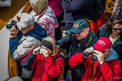 2014 - Tracy Arm - Alaska Cruise - Anyone Spot the Glacier Yet? (Ted's photos - For Me & You) Tags: camera travel people hat alaska nikon caps binoculars cap national cameras harleydavidson hood 2014 alaskacruise d600 hatband nikond700 tedsphotos nikonfx ringssun d600fx shenandoahglassesjacletscoatsgroupgroup photovignettingcroppedringswedding glassesaimingphotographerphotographersshootinghoodhoodierailinglenscamera lenstelephototelephoto lenslookingpeeringcrowdleather capstrapcamera strapshenandoah parkteethearearslens