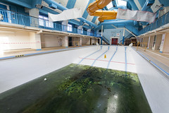 Water looks fine to me. (donebythehandsofabrokenartist) Tags: urban 3 green abandoned water pool swimming canon iii run explore dont forgotten l 17 5d leisure 40 algae mm left exploration derelict f4 1740 mk urbex mkiii mk3 5d3 5diii abandonedography