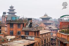 India_0690