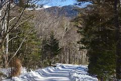 八ヶ岳(やつがたけ)-20170204_121926-LR (HYLA 2009) Tags: 八ヶ岳 alpineclimbing japan taiwan yhhsu yatsugatake mountain snow やつがたけ アイス アルプス クライミング 冬山 山 爬山 登山 許永暉攝影 雪地