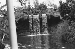 Jungle Cruise (Tom Simpson) Tags: junglecruise vintage disney disneyland 1960s photos photography river boat ride attraction
