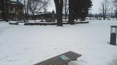 Bookcrossing release (zimort) Tags: bok book bookcrossing wildrelease gjøvik norge norway norwegen benk bench park