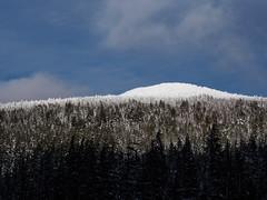 layer cake (dolanh) Tags: skiing bend downhill mtbachelor skirental