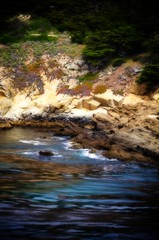 Headland Cove (AliTalley) Tags: ocean beach water monterey cove cyprus shore pointlobos tpsseascape