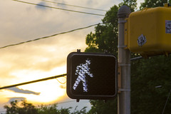 Day 150 - Week End (brandondesign) Tags: street light sunset sky tree clouds walking symbol charlotte icon pole wires 365 crosswalk project365 365project