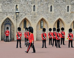 Img408494nx2_conv (veryamateurish) Tags: army military windsor british windsorcastle changingoftheguard grenadierguards oldguard footguards householddivision royalmarines changingtheguard newguard royalmarinecorps