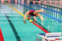 IMG_5632 (moutoons) Tags: natation champion swimmingpool podium swimmer provence cadets piscine bassin laciotat championnat minimes nageurs cercledesnageursdemarseille giacomoperezdortona florentmanaudou benjaminstasiulis grgorymallet comitrgionaldeprovence championnatdeprovencedt cercledesnageursciotadens