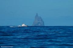 Ball's Pyramid - Lord Howe Island Circumnavigation (Black Diamond Images) Tags: mountains island boat paradise australia cliffs nsw boattrip circumnavigation lordhoweisland worldheritagearea ballspyramid thelastparadise circleislandboattour