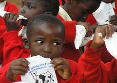 """Africa Milk Project - Njombe - Tanzania • <a style=""""font-size:0.8em;"""" href=""""https://www.flickr.com/photos/124962655@N08/14365855165/"""" target=""""_blank"""">View on Flickr</a>"""