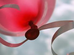 Celebrate... (Shelby's Trail) Tags: life sky macro is sweet good balloon celebration ribbon hss sliderssunday
