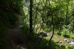 2014_Tordai_hasadk_0545 (emzepe) Tags: creek stream hiking path bach transylvania transilvania schlucht kirnduls roumanie 2014 cheile patak t erdly nyr rumnien ardeal jnius siebenbrgen tra hegysg svny tordai hasadk romnia turzii gyalogt tordaihasadk hegymszs mszk turistat torockihegysg thorenburger mszkhasadk torocki