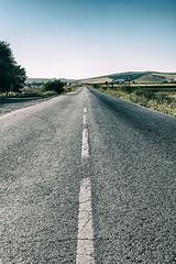 Road to nowhere 2 (cives-expat) Tags: españa caballos carretera paisaje campos jerezdelafrontera