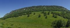 2014-06-21 (11)Alpage de Fessole (steynard) Tags: vercors