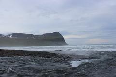 Shore of Hælavík, Hornstrandir Nature Reserve (Westfjords)